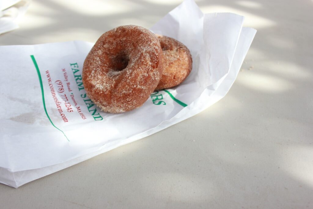 Connor's Farm Apple Cide Donuts